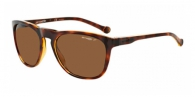 SUNGLASSES Arnette
